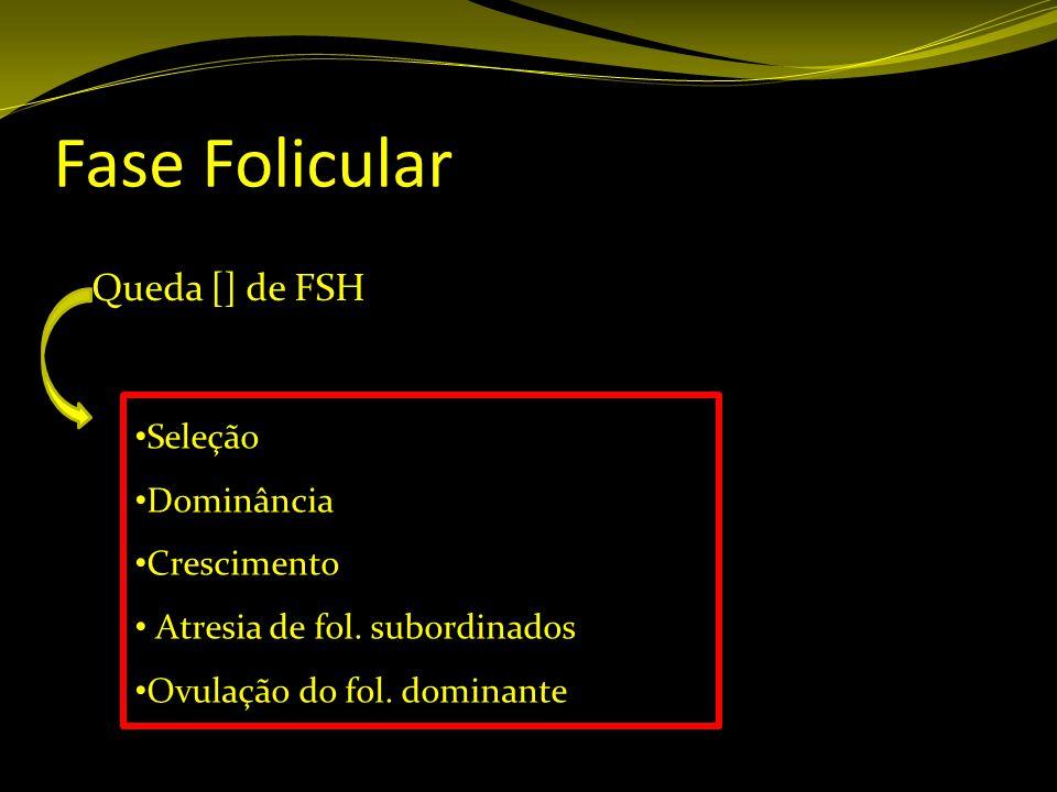 Fase Folicular Queda [] de FSH Seleção Dominância Crescimento